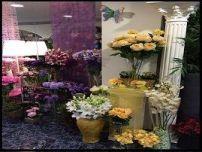 7.-tienda de flores zaira