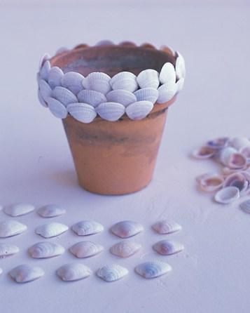conchas jarros