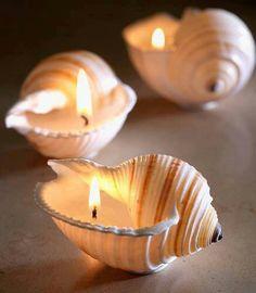 conchas velas4