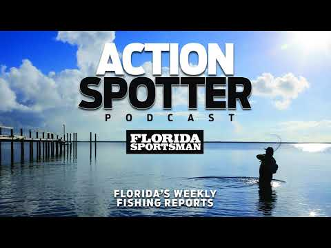 Episode 95: What's Biting In June?    Action Spotter Podcast