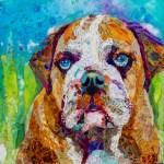 Elizabeth St. Hilaire - Bull Dog