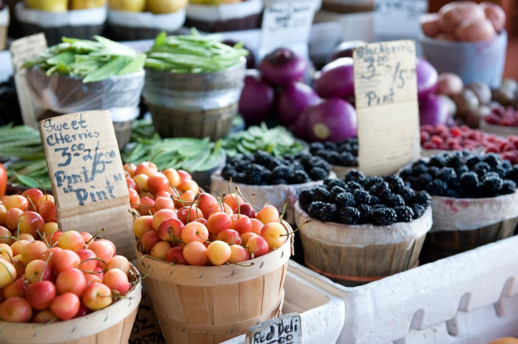 Which Foods can Improve your Gut Bacteria