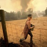 Wildfires Ripping throughNorthern California - Florida Daily Post