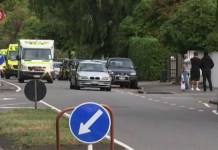40 Killed in New Zealand Mosque Shootings