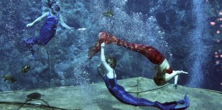 Florida city known for mermaids now sleeps with the fishes