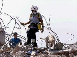 'Our backyard': Tragedy strikes home for Miami-Dade rescuers
