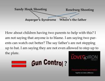 gun-control-vs-family-law-reform-20164