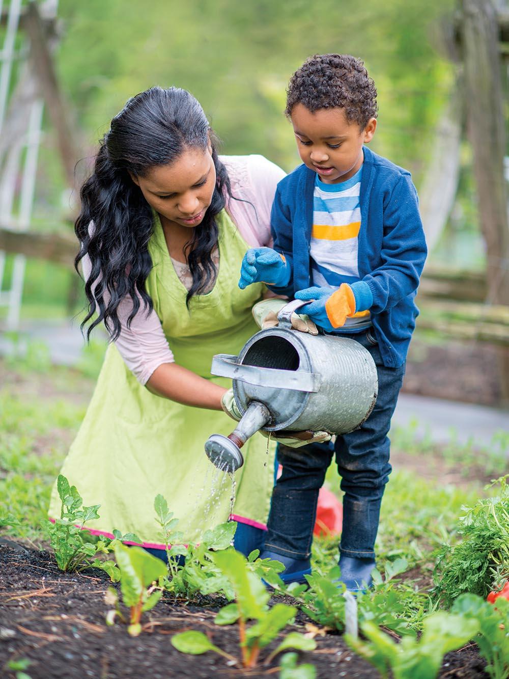5 Easy Vegetables To Grow In Your Florida Garden Florida Farm Family