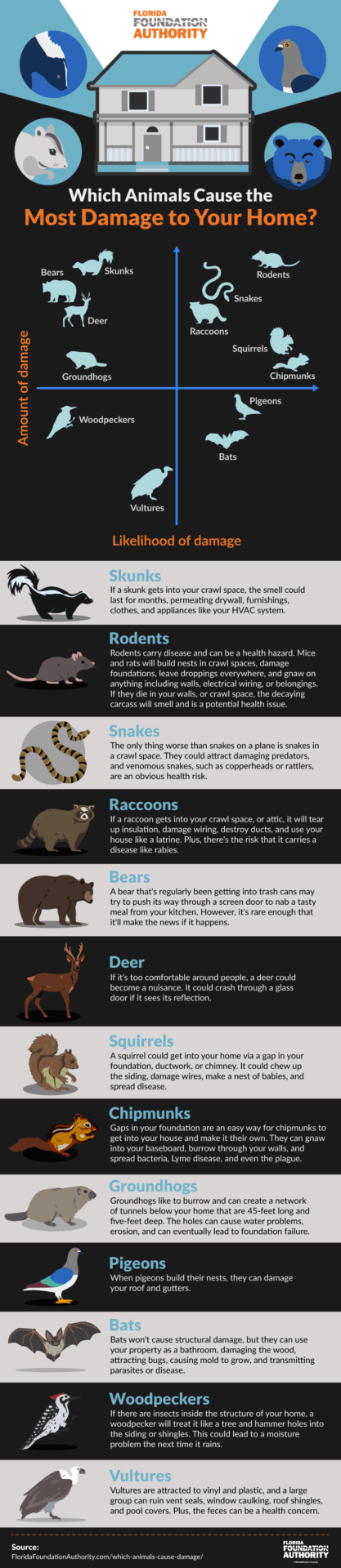 Which animals cause the most damage to your home