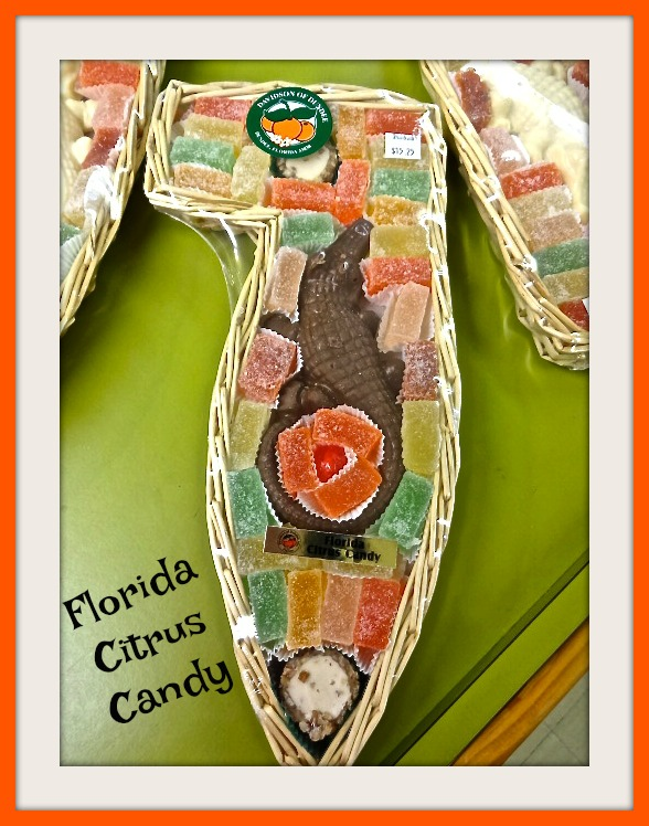 Florida Citrus Candy - A Sweet Gift Idea!