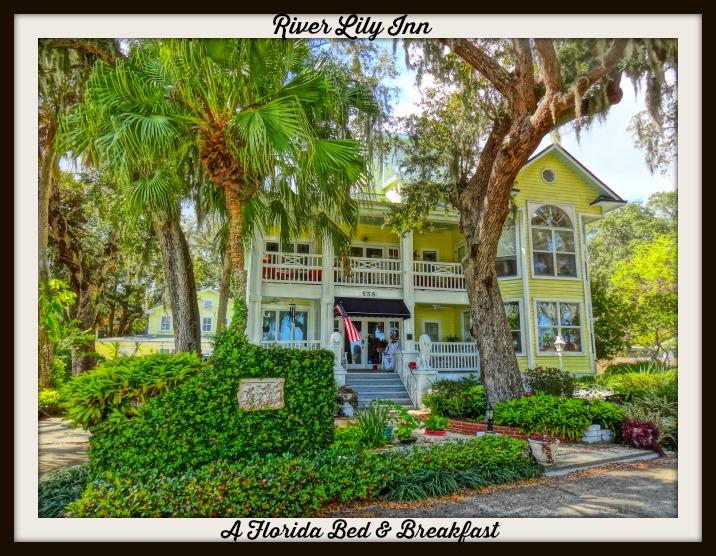 Florida Gifts | FunAndFork