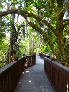 Cypress Harbour Nature Walk