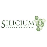 Silicium