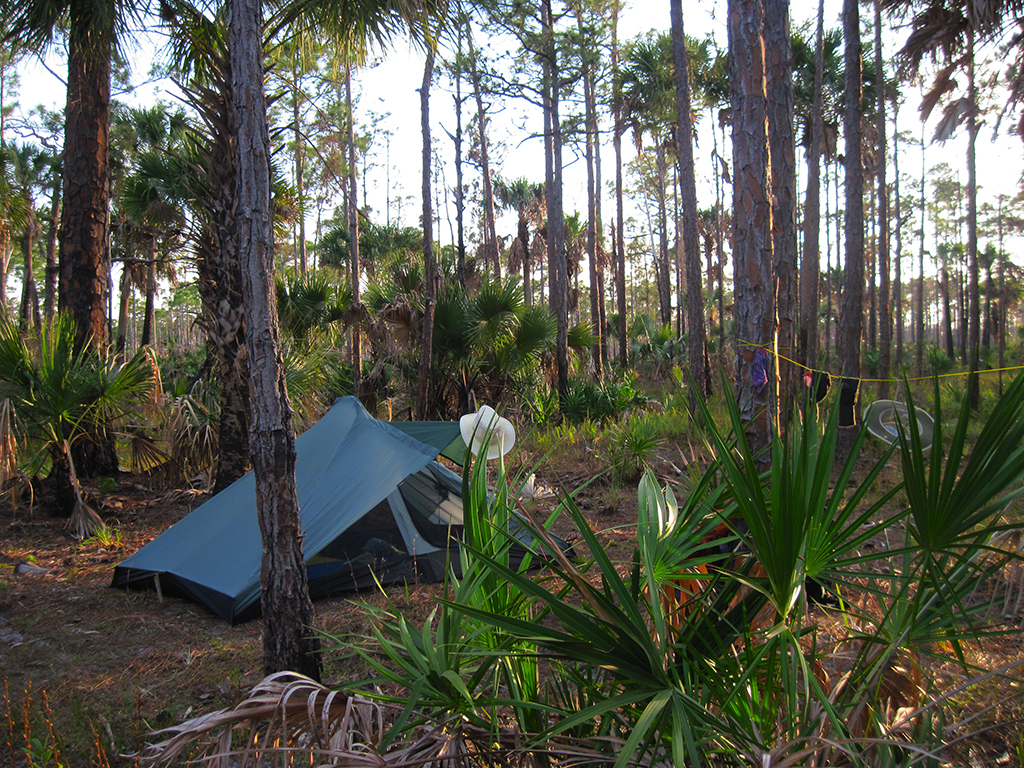 How To Tent Camp In Florida