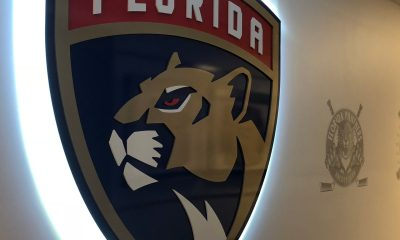 Detroit Panthers Wings Florida