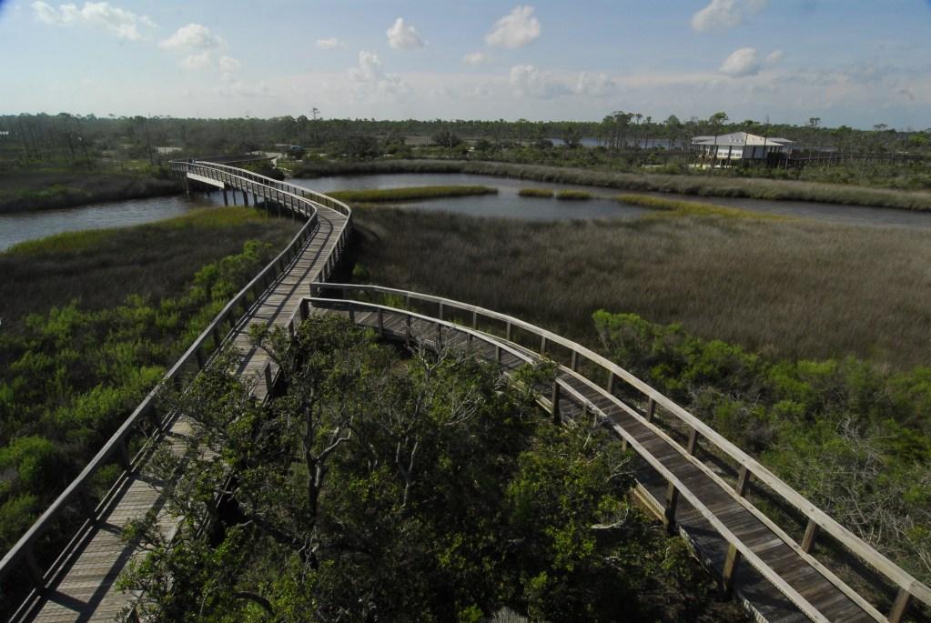 Boardwalks at Big Lagoon State Park