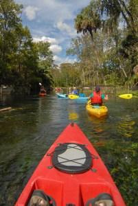 Photo Gallery: Silver Springs by Kayak