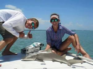 Catch Shark in Islamorada with Captain Jacob