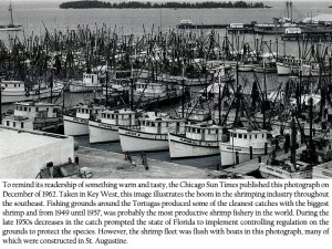 Key West Shrimp Boats 1962 Click on Photo for a Larger View.