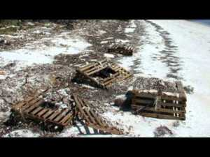 Lobster Traps Washed Ashore