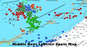 Florida Keys Spiny Lobster