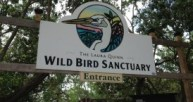 Image result for Florida Keys Wild Bird Rehabilitation Center