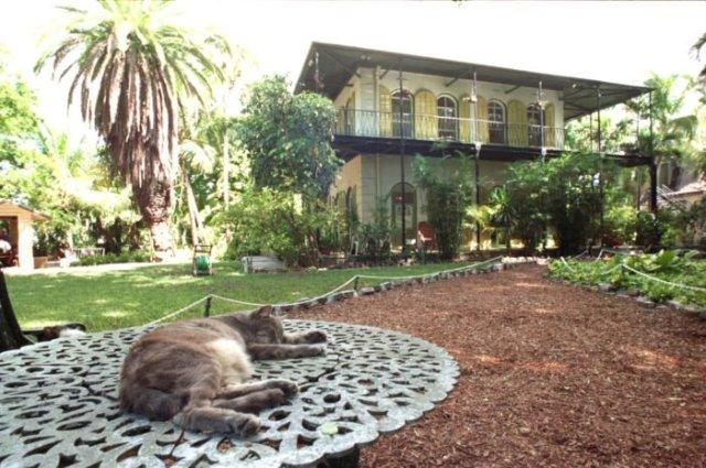 Hemmingway House Florida Keys