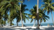 Moorings Village - Islamorada Florida Keys Hotels