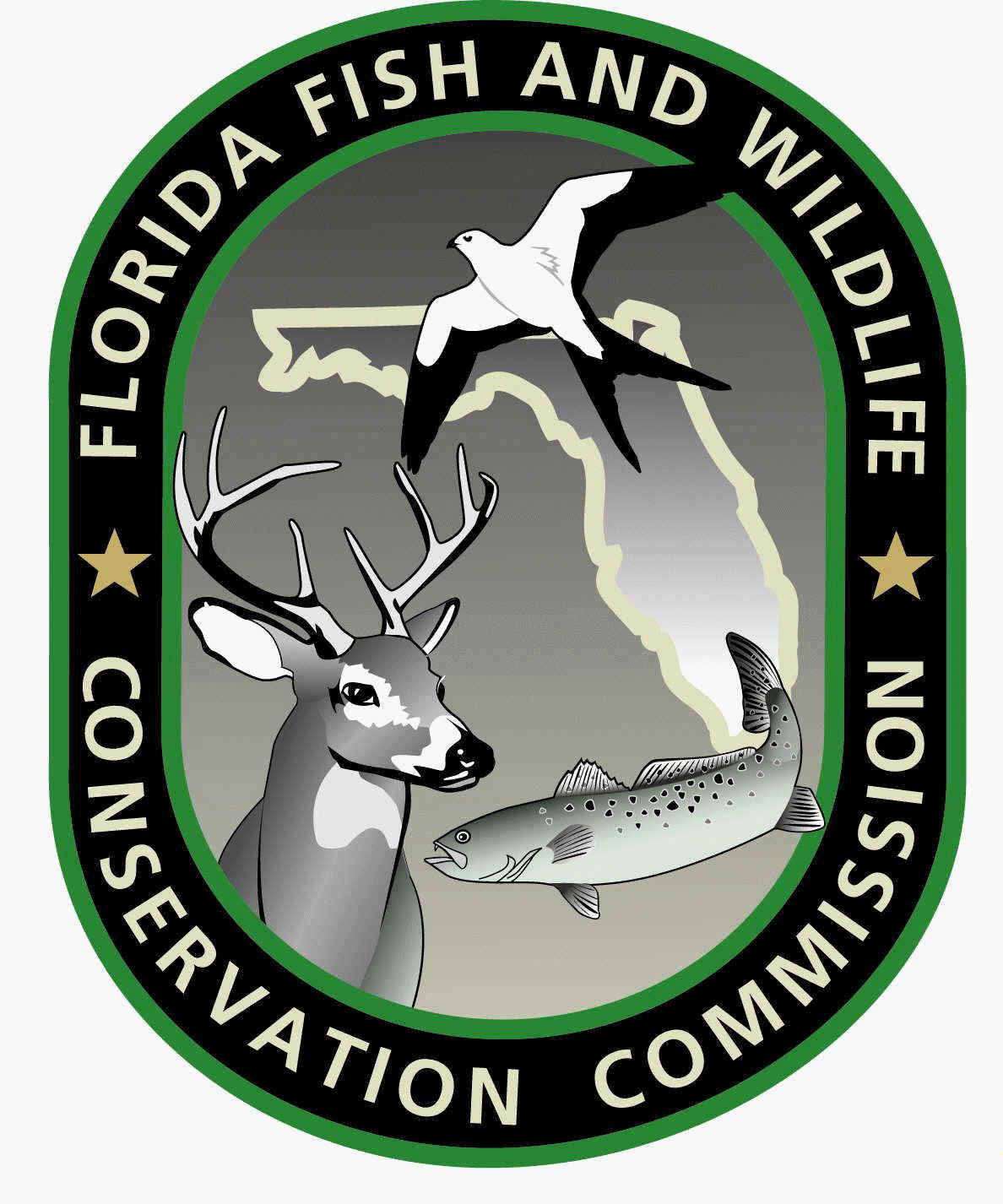 FWC Saltwater Public Comments