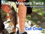fishing-measure-twice-2