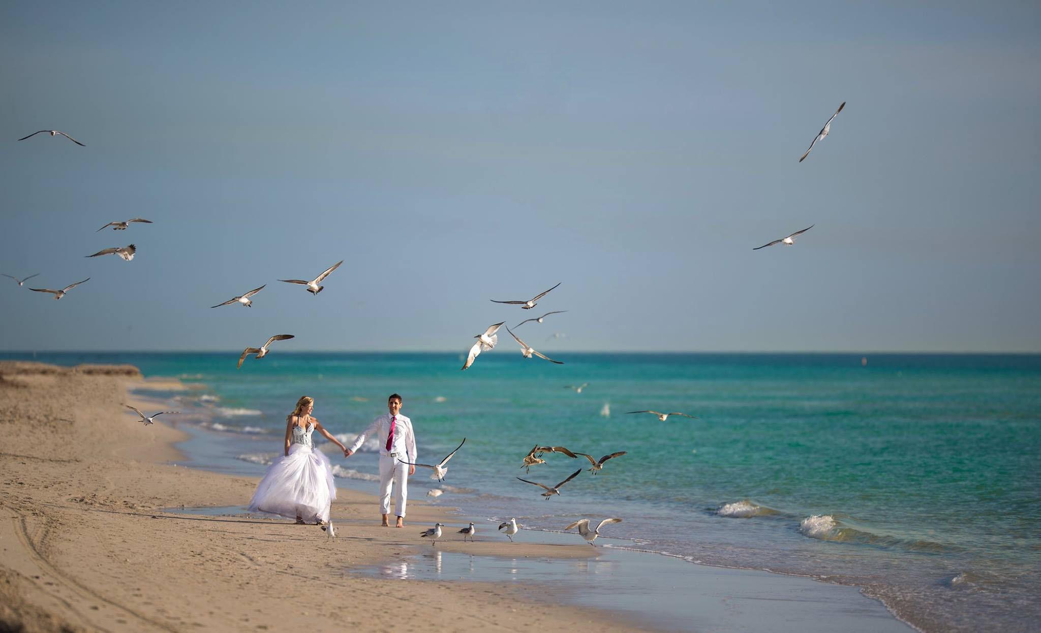 cheap beach florida weddings (63)