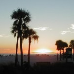 10 free and cheap things to do in Sarasota