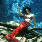 Iconic Mermaids at Weeki Wachee in Florida