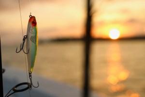 florida panhandle charters panama city beach fishing