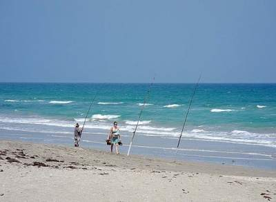 Surf fishing is popular on Hutchinson Island