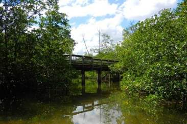 Kayak trail under bridge at St. Lucie Inlet Preserve State
