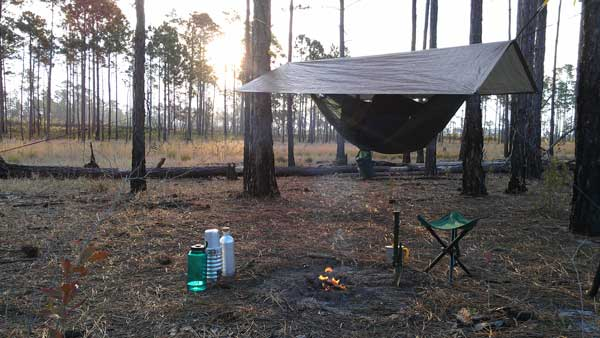Hammock tent in Ocala National Forest & Primitive camping unlimited in Ocala National Forest | Florida Rambler