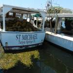 Sponge fishing boat in Tarpon Springs.