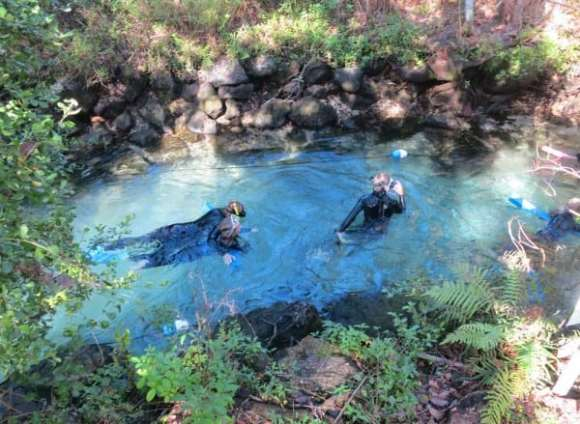 Snorkelers swim against a swift current to enter Three Sisters Springs in Crystal River.