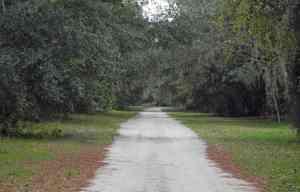 muti-use trail in the Rock Springs Run Preserve