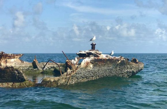 The concrrete barge in Garden Cove in Key Largo is a picturesque ruin in shallow water 1.3 miles from the launch site. (Photo: Bonnie Gross)