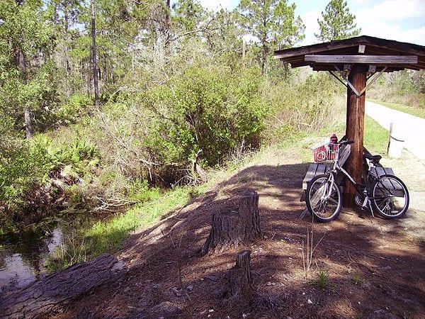 Van Fleet Bike Trail bench