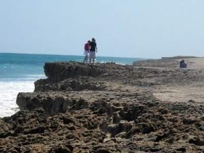Cliffs at Blowing Rocks, Jupiter, Florida