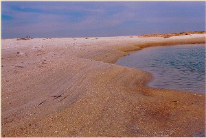 Shifting sand and water on Cayo Costa State Park