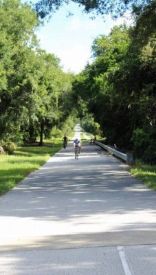 Pinellas Trail near Dunedin