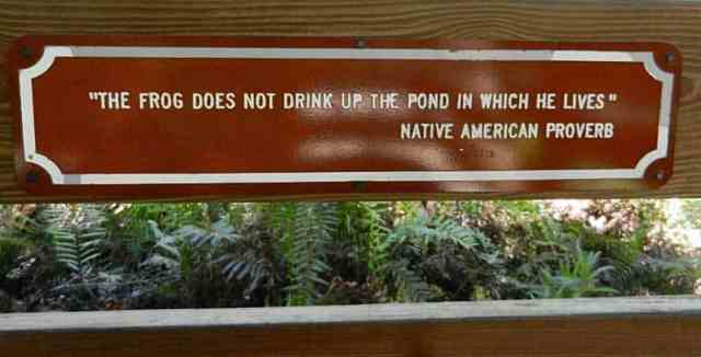 There are thought-provoking and inspirational signs sprinkeled along the boardwalk at Six Mile Cypress Slough Preserve in Fort Myers