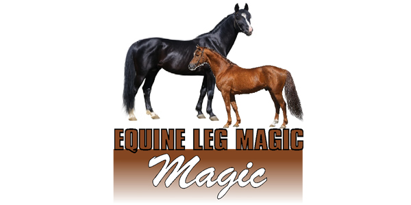 equine leg magic