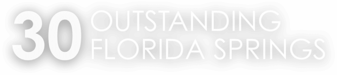 30 Outstanding Florida Springs