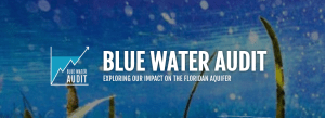 Blue Water Audit