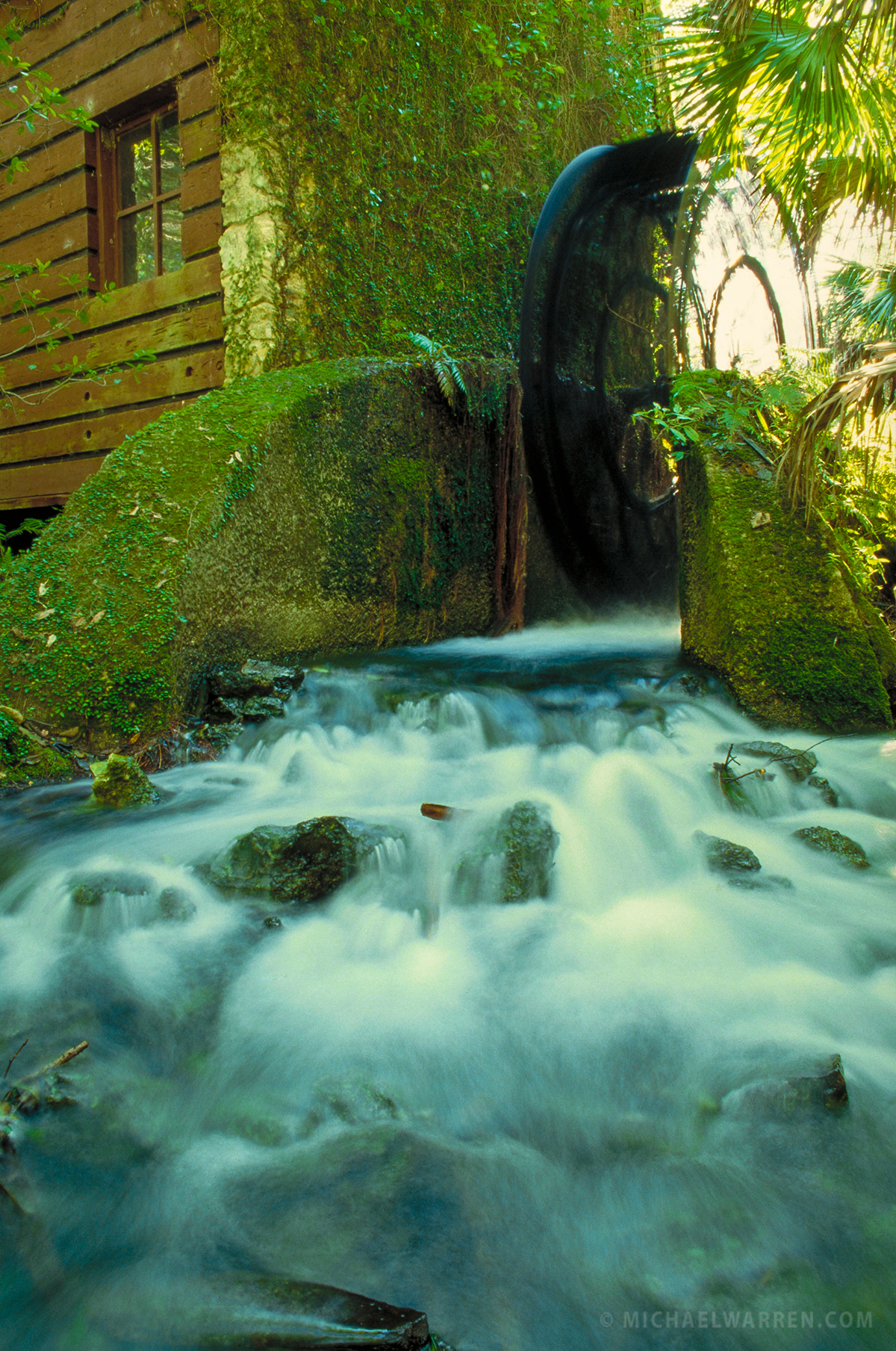 Juniper Springs   Ocala National Forest